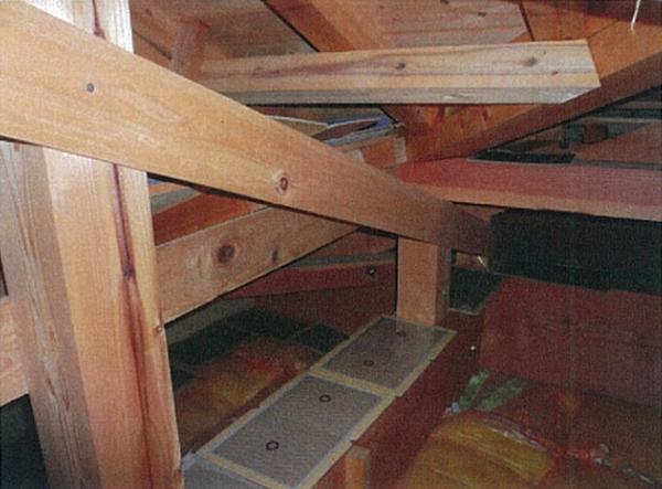 天井裏。捕獲用の粘着ボードを通り道に設置します。